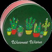 2C Festive Cacti